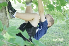 Mark Hall's grandson, is climbing a tree to test gravity