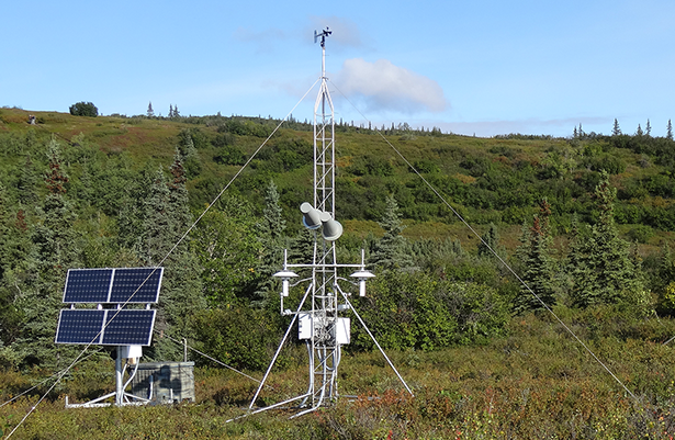 CRN site north of Denali Mountain in Alaska