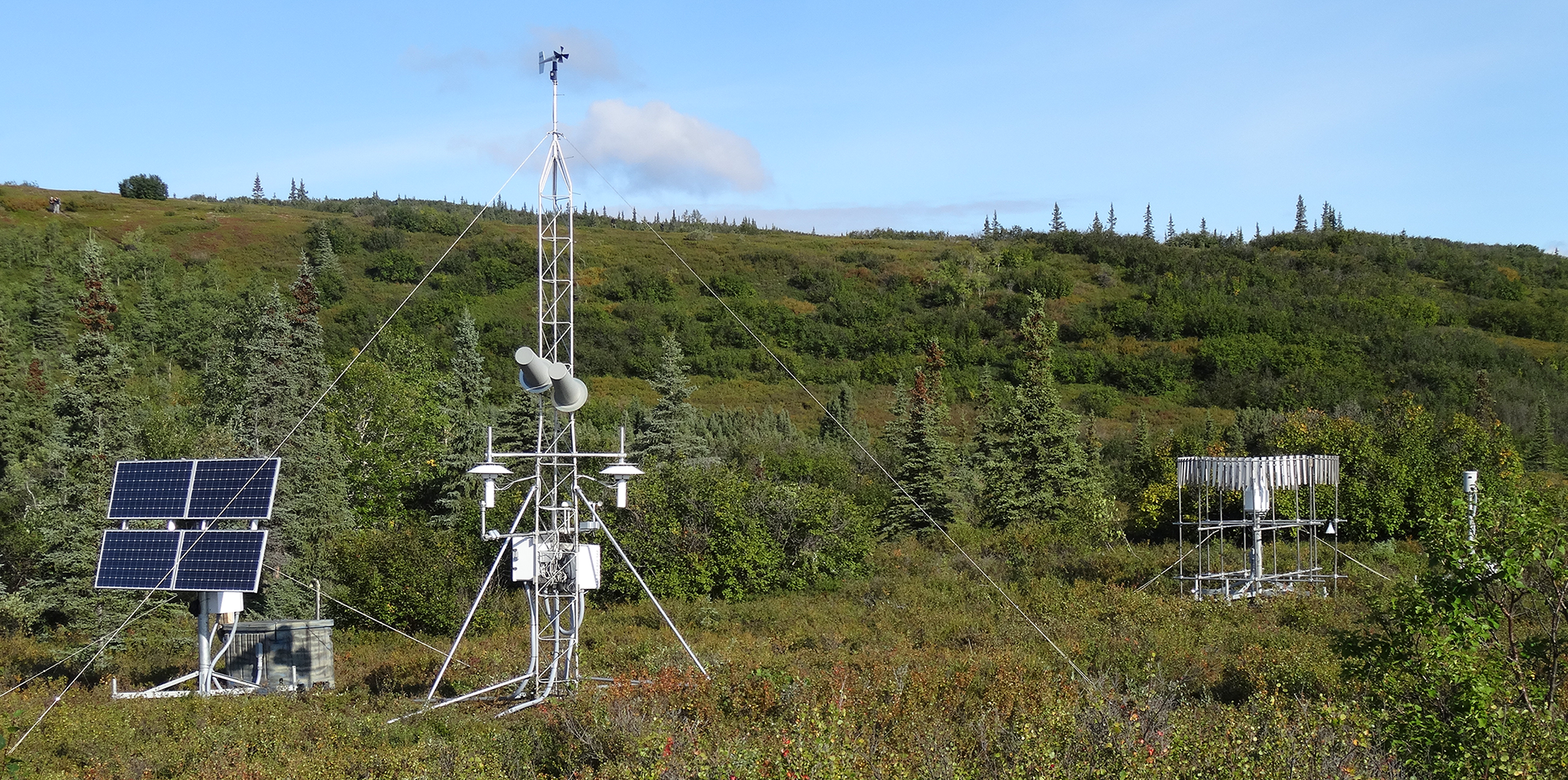 Site in Denali National Park, Alaska