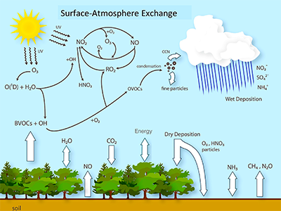 Surface-Atmosphere Exchange Diagram