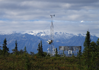 Climate Reference Network site in Denali National Park, Alaska