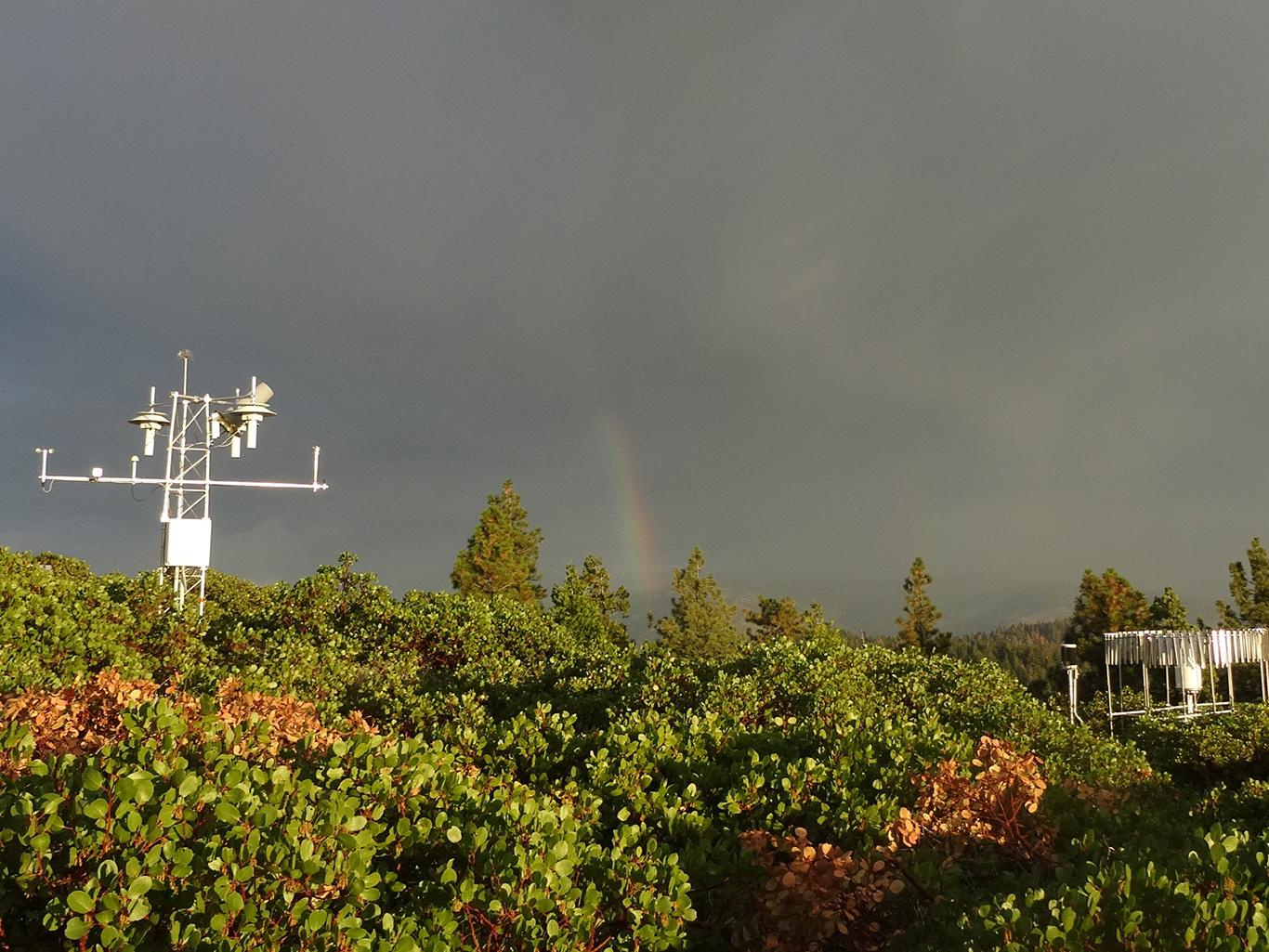 Site photo for CA Yosemite Village