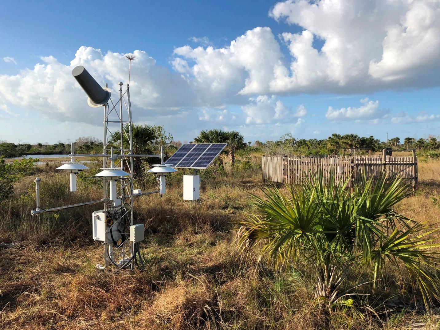 Site photo for FL Everglades City