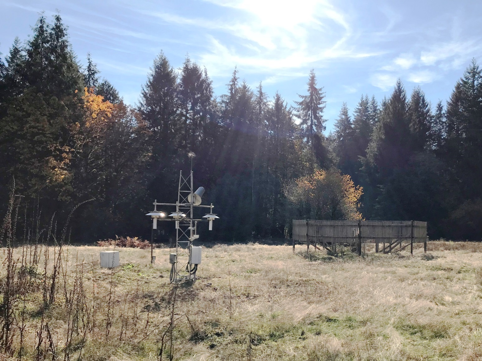 Site photo for WA Quinault