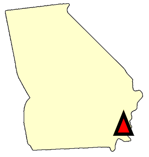 State map location for GA Brunswick