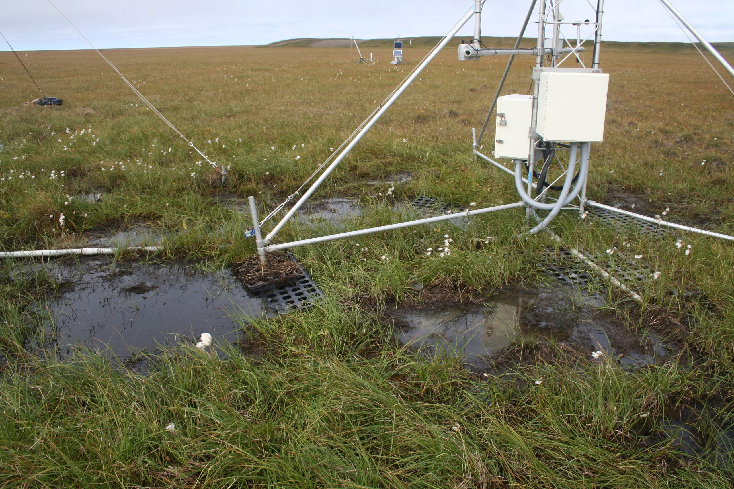 CRN site in tundra of Alaska
